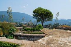 Tornet på ön Arkivbild