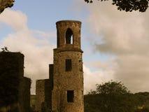 Tornet på smickrar slotten Irland Arkivbild