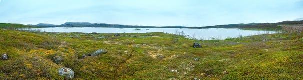Tornetrask sikt för sjösommar (Lapland, Sverige) Royaltyfri Bild