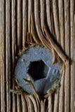 Tornillo de madera Fotografía de archivo