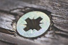 Tornillo de madera Fotos de archivo