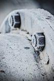 Tornillo frío en el invierno Fotos de archivo