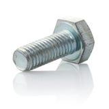 Tornillo metálico con la cuerda de rosca Foto de archivo libre de regalías