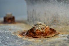 Tornillo oxidado Imagenes de archivo