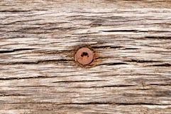 Tornillo oxidado del maleficio en tablero Fotos de archivo