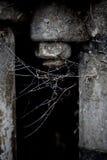 Tornillo viejo con el web de araña B&W Fotos de archivo libres de regalías
