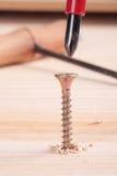Tornillo y madera Imágenes de archivo libres de regalías