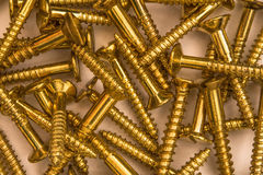 Tornillos de madera de cobre amarillo Imagen de archivo libre de regalías