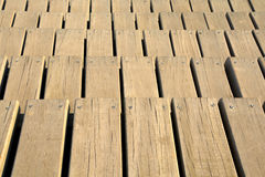 tornillos del tablero de madera Imagen de archivo