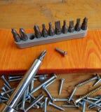 Tornillos, destornillador y sistema de pedazos y de x28; heads& x29; Foco seleccionado Imagen de archivo libre de regalías