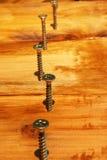 Tornillos en el tablón de madera Imagen de archivo libre de regalías