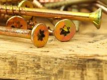 Tornillos en la madera de la plataforma Foto de archivo libre de regalías