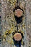 Tornillos oxidados en tablón de madera viejo imágenes de archivo libres de regalías