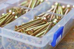 Tornillos penetrantes largos en caja de almacenamiento plástica transparente en un banco de madera Fotografía de archivo libre de regalías