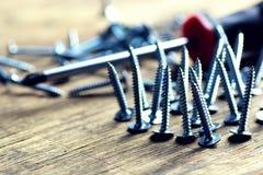 Tornillos y ruleta del destornillador Fotos de archivo libres de regalías