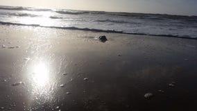 Tornitura di marea Fotografie Stock Libere da Diritti