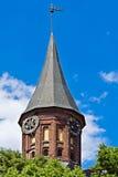 TornKonigsberg domkyrka. Gotiskt 14th århundrade. Kaliningrad Ryssland fotografering för bildbyråer
