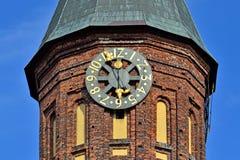 TornKonigsberg domkyrka Symbol av Kaliningrad, Ryssland fotografering för bildbyråer
