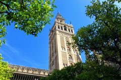 Tornspira av den Seville domkyrkan i Spanien royaltyfria bilder