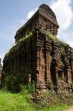 Torntempel Myson Vietnam Fotografering för Bildbyråer