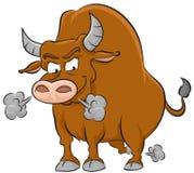 Toro arrabbiato Fotografie Stock