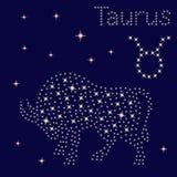 Toro del segno dello zodiaco sul cielo stellato illustrazione di stock