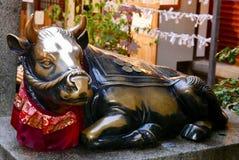 Toro dorato in tempio di Kyoto Fotografia Stock