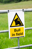 Toro nel segnale di pericolo del campo Immagini Stock