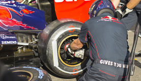 Toro Rosso F1 Royalty Free Stock Photography