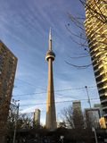 Toronto's Cntower fotografie stock libere da diritti