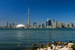 Toronto Stock Photography