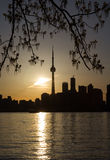 Toronto céntrico y Foilage Foto de archivo
