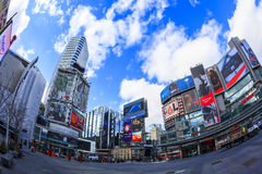 Toronto   Canada. TORONTO,CANADA - FEB 5 2016: Yonge-Dundas Square in Toronto, Canada. Yonge- Dunda Square is a commercial, and public square, hosts many events Stock Image