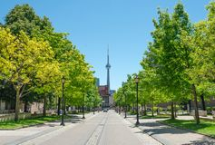 Toronto, Canada. Toronto Street with CN Tower View, Ontario, Canada royalty free stock image