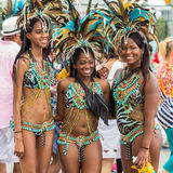 Toronto Caribbean Carnival 2015 F Royalty Free Stock Photo