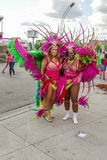 Toronto Caribbean Carnival 2015 L Royalty Free Stock Photo