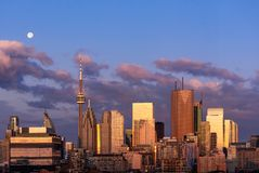 Toronto city center skyline early morning magic hour. Toronto city center skyline early morning golden hour sunrise with visible moon royalty free stock image