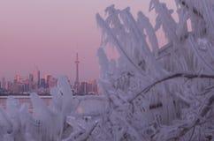 Toronto city skyline during winter Polar Vortex. Toronto city skyline during Polar Vortex, colorful pink and orange sunset sky, frozen surface of Lake Ontario stock image