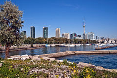Toronto cityscape panorama CN Tower Stock Photography