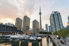 Toronto CN Tower Stock Images