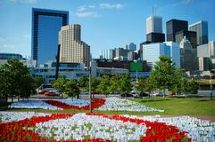 Toronto da baixa Foto de Stock Royalty Free