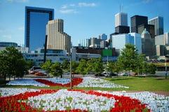 Toronto de stad in royalty-vrije stock foto