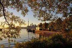 Toronto del centro Fotografie Stock Libere da Diritti
