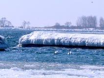 Toronto gleczeru Jeziorny krajobraz 2015 Zdjęcie Stock
