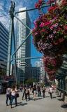 Toronto hi-rise buildings Stock Image
