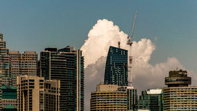 Toronto horisont 2 Arkivfoton