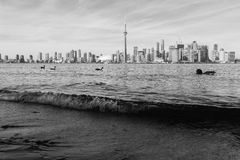 Toronto i svartvitt Fotografering för Bildbyråer
