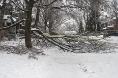Toronto ice storm royalty free stock images