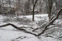 Toronto ice storm stock image