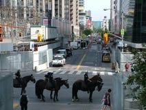 TORONTO - 23 juin 2010 - policiers marchant sur les rues sur des chevaux pendant G20 la protestation à Toronto, Ontario, Canada Photographie stock